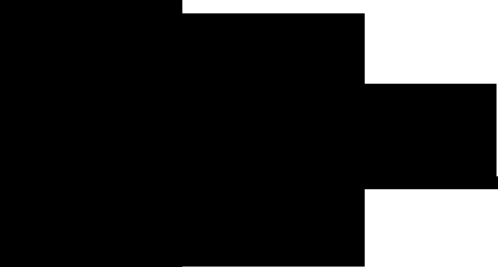 Spletna stran IAESTE Slovenija